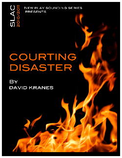 Courting Disaster web